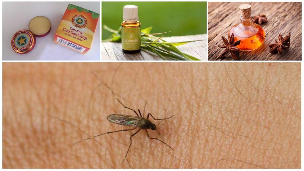 Эффективная борьба с надоедливыми комарами дома и на улице