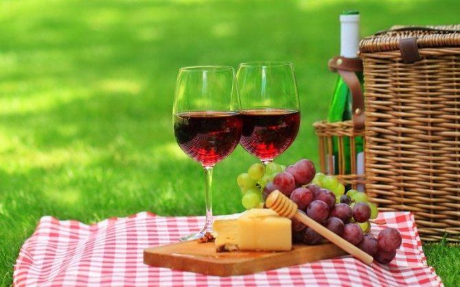 Как устроить интересный пикник. как организовать идеальный пикник: важные советы. отдых в парке
