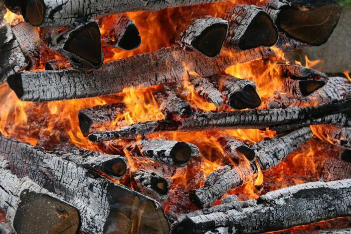 Правильно пожарить шашлык на мангале на углях: температура, время, техника