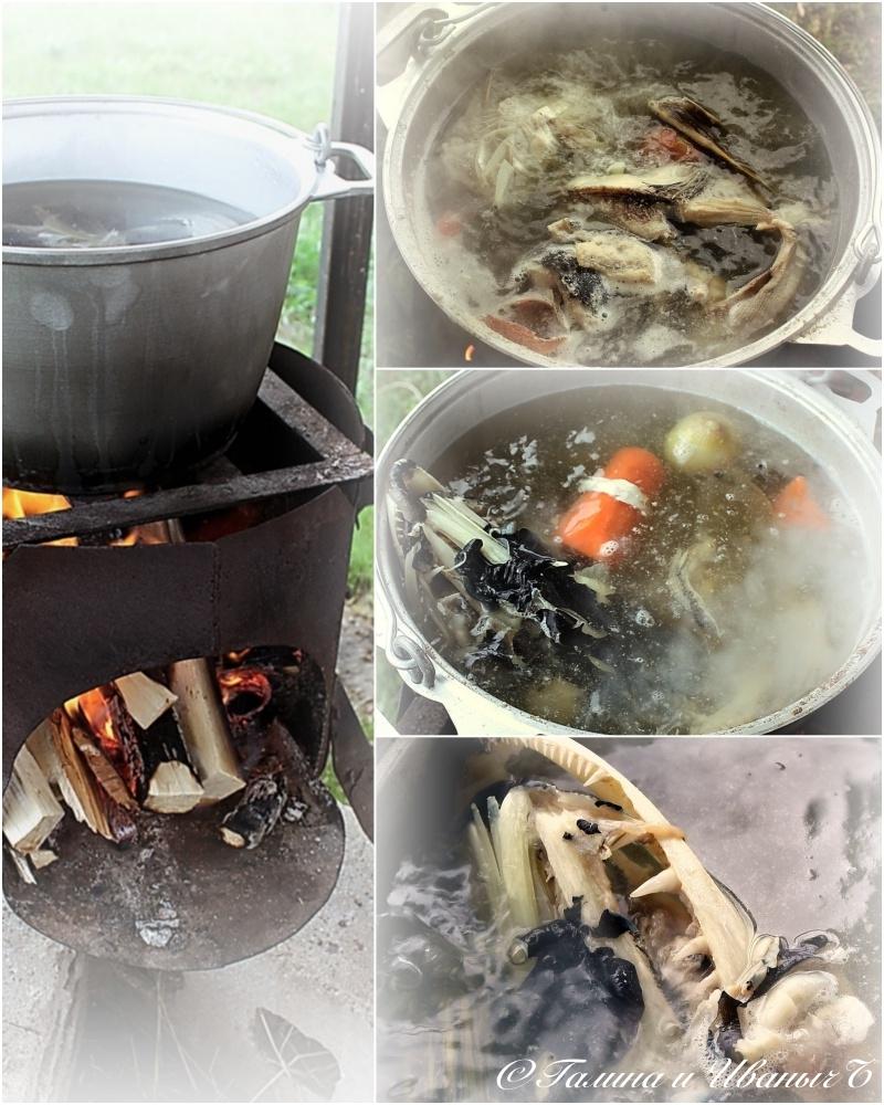 Настоящая рыбацкая уха с водкой на плите или костре