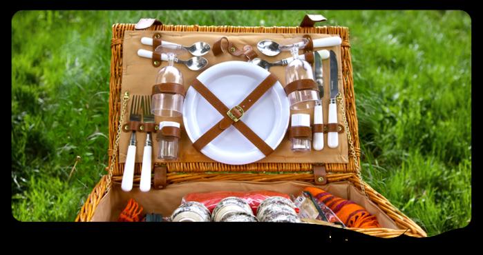 Отдых на природе: 7 простых советов, как организовать идеальный пикник