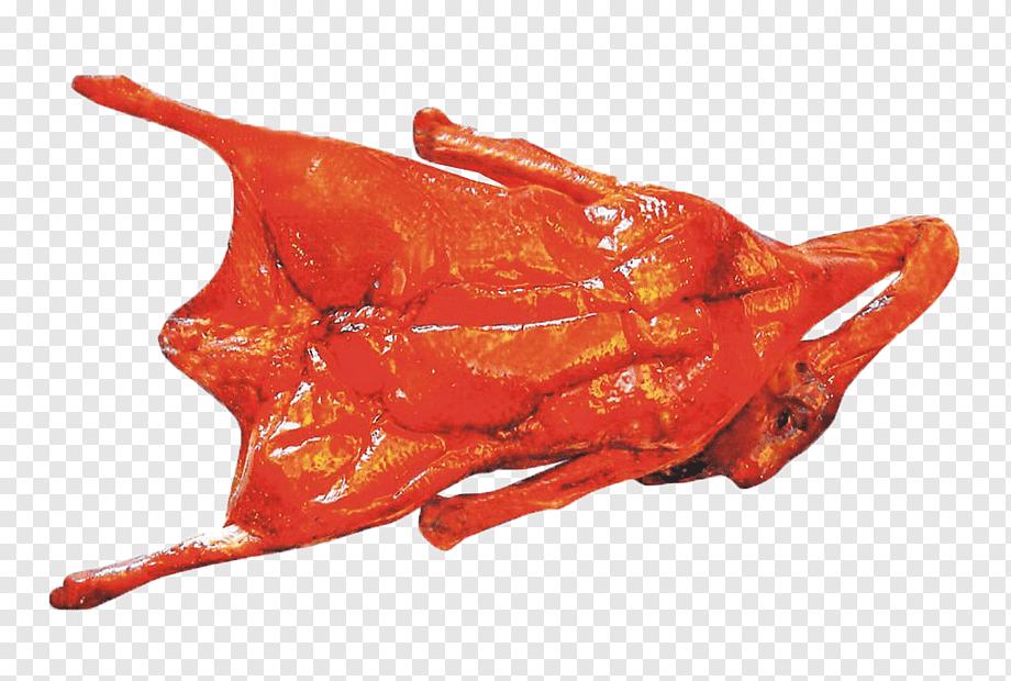 Шашлык из утки – 6 самых вкусных рецептов