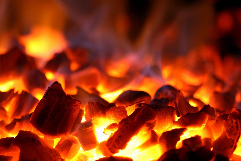 Аргументы для выбора: на каких дровах жарить шашлык