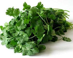 Как улучшить свое здоровье с помощью кориандра: полезные рецепты