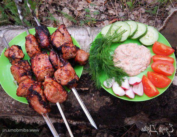 Шашлык на кефире: маринад для шашлыка из свинины на кефире