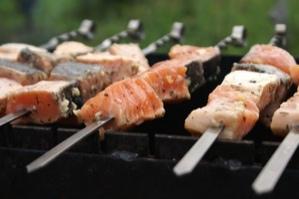 Шашлык из рыбы — какую выбрать рыбу [+3 рецепта маринада]