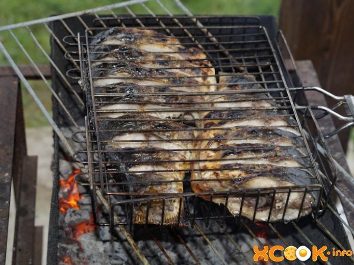 Шашлык из рыбы: рецепты вкусного маринада. шашлык из карпа и кое-что ещё
