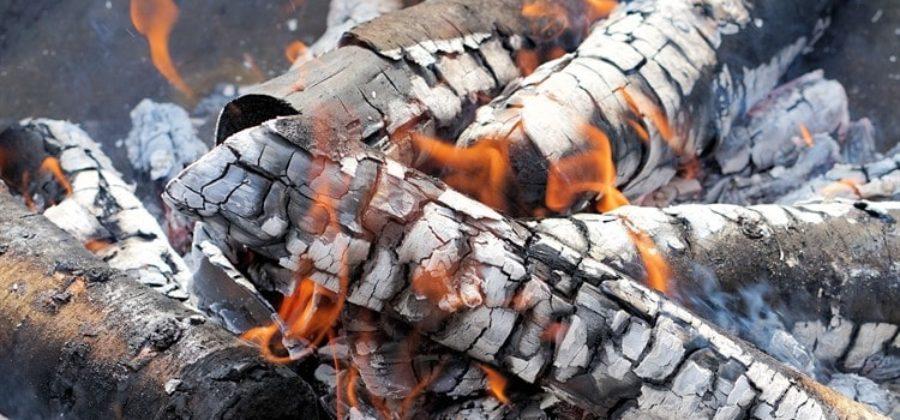 Где можно и где нельзя жарить шашлыки в черте города – закон и штрафы