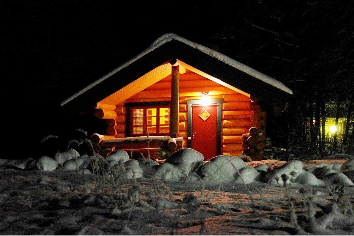 Шашлык на новый год дома. новогодний шашлык – готовим дома как на природе