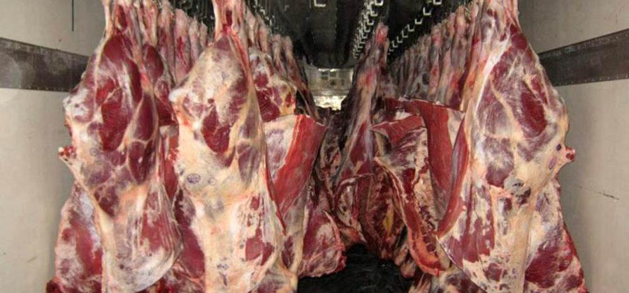Какое мясо лучше на шашлык из свинины