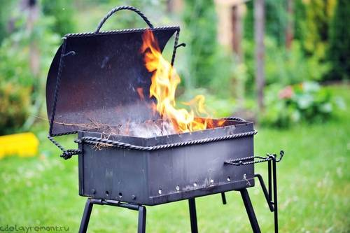 Мангал, гриль, печь-барбекю или диск – что выбрать для готовки мяса :: инфониак