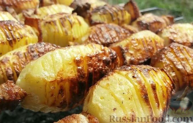 Картошка на мангале – 3 рецепта приготовления шашлыка из картошки