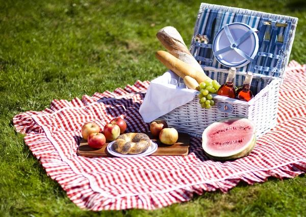 Устраиваем романтический пикник. что взять на романтический пикник