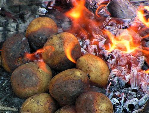 Сколько жарить картошку на костре