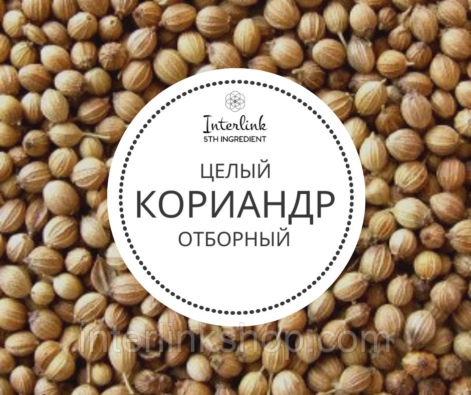 Пикантная приправа кориандр: что это такое и как применяют в кулинарии