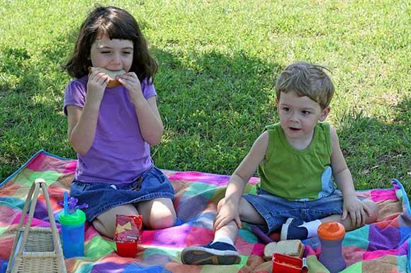 Что взять на пикник к с детьми: отдыхаем на природе