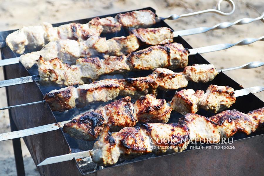 Шашлык из свинины — проверенные рецепты на любой вкус