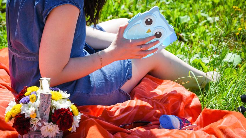 Что взять с собой на пикник из еды летом. что нужно обязательно взять с собой на пикник