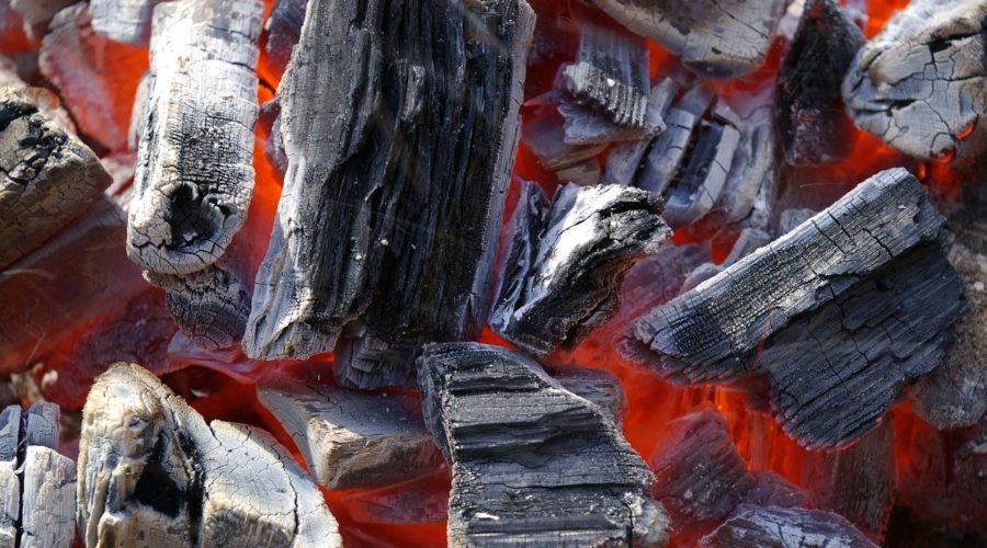 Какой уголь для мангала выбрать: березовый, дубовый, кокосовый или брикеты, рейтинг лучших производителей, их плюсы и минусы, а также полезные советы и рекомендации