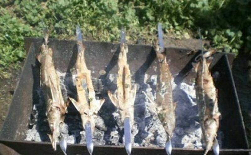 Шашлык из кеты: рецепт как замариновать и приготовить на решётке на мангале