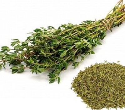 О кулинарных и лечебных свойствах тимьяна: чем он лучше других пряностей и кому противопоказан?