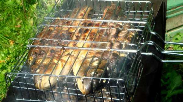Как вкусно приготовить карпа на мангале: рецепты на решетке и шампурах - onwomen.ru
