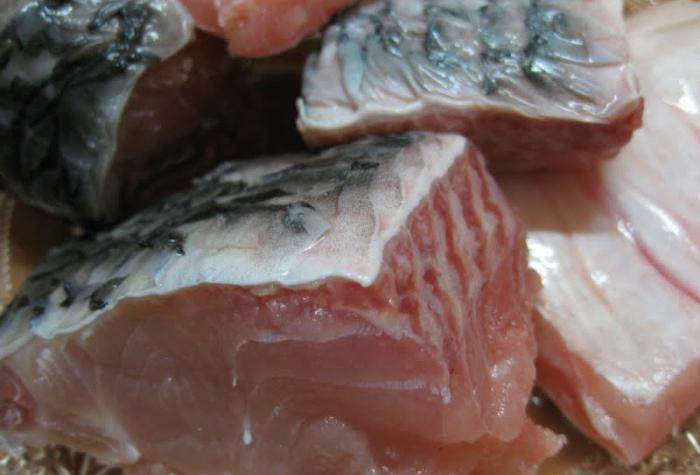 Шашлык из толстолобика на мангале — как мариновать и приготовить, рецепты