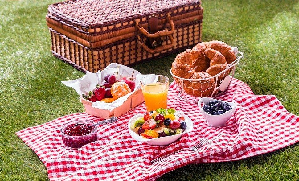 Важные советы для организации семейного пикника