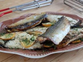 Как приготовить шашлык из скумбрии на мангале – 6 рецептов