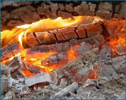 Какие дрова лучше для шашлыка: особенности выбора и рекомендации