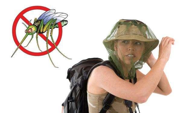 Средство от комаров — советы и рекомендации по выбору согласно преимуществ и недостатков