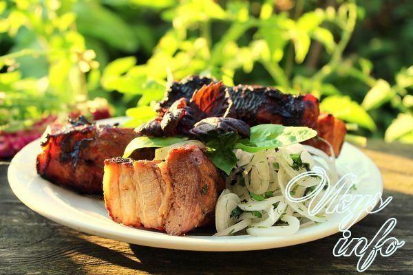 Шашлык из свинины в томате: рецепты с маринадом из сока и пасты