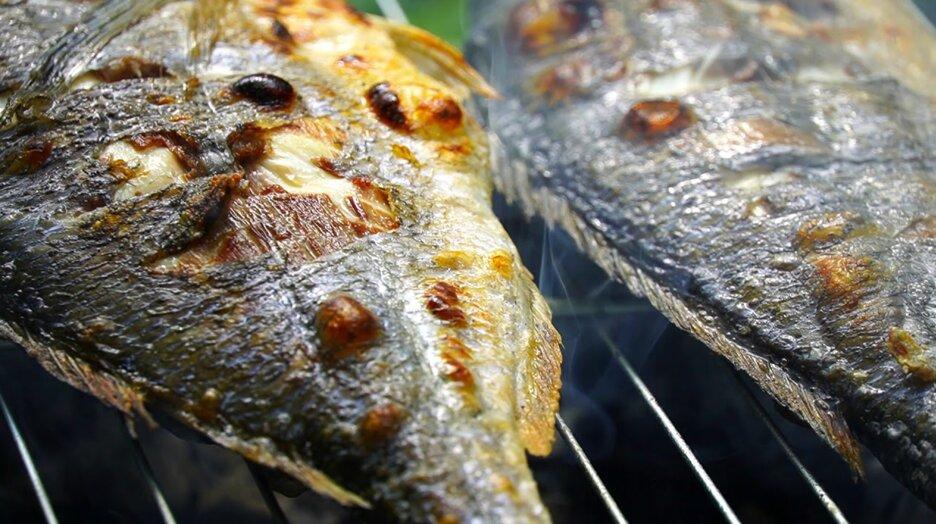 Дорадо на мангале — вкусная морская рыба на углях - рецепты джуренко