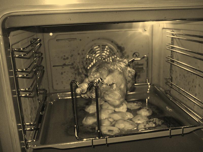 Свинина на вертеле в духовке