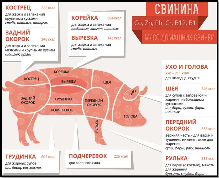 Как выбрать мясо для шашлыка свинина и какая часть лучше для приготовления