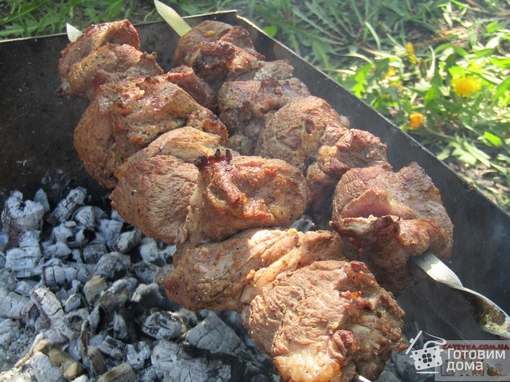 Шашлыка из индейки — в чем мариновать и как готовить вкусно